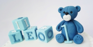 Teddy / Blocks